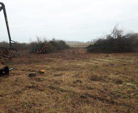 Natura 2000 herstel maatregelen de Wieden